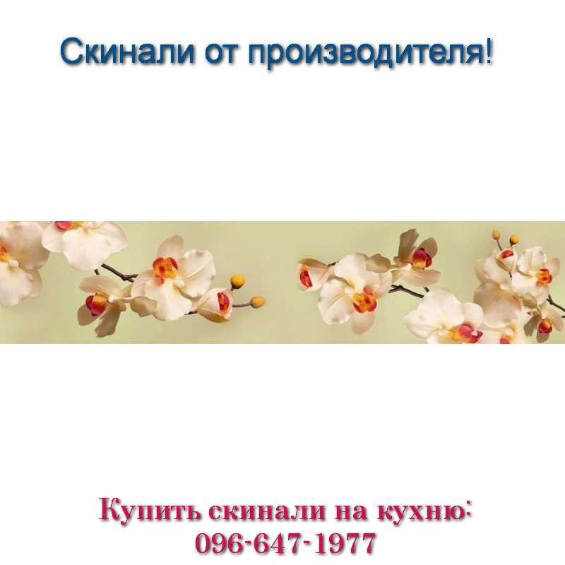Фото скинали - белые орхидеи с бутонами